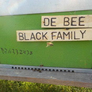 De Bee Black Family